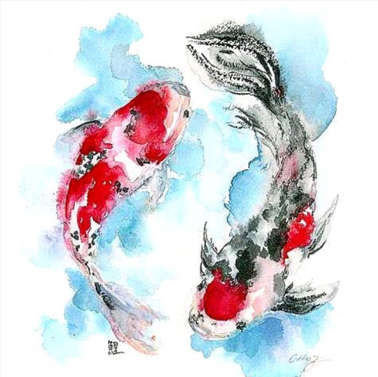 pesci-maggio